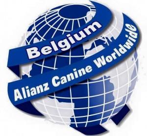 alianz belgique